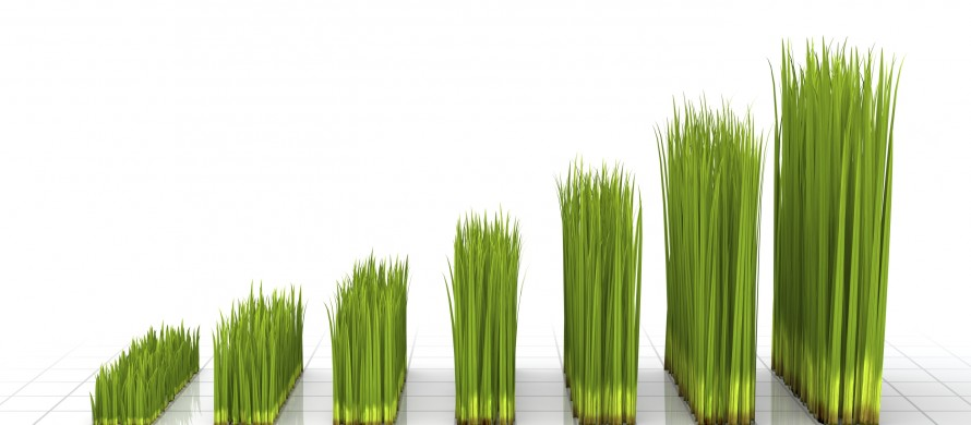 https://blog.en.erste-am.com/wp-content/uploads/sites/13/2015/07/iStock_000013713264_Green_Grass_Chart-890x390.jpg